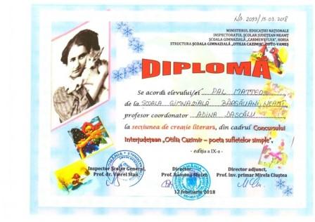 diplome-concurs-interjudetean-otilia-cazimir-3